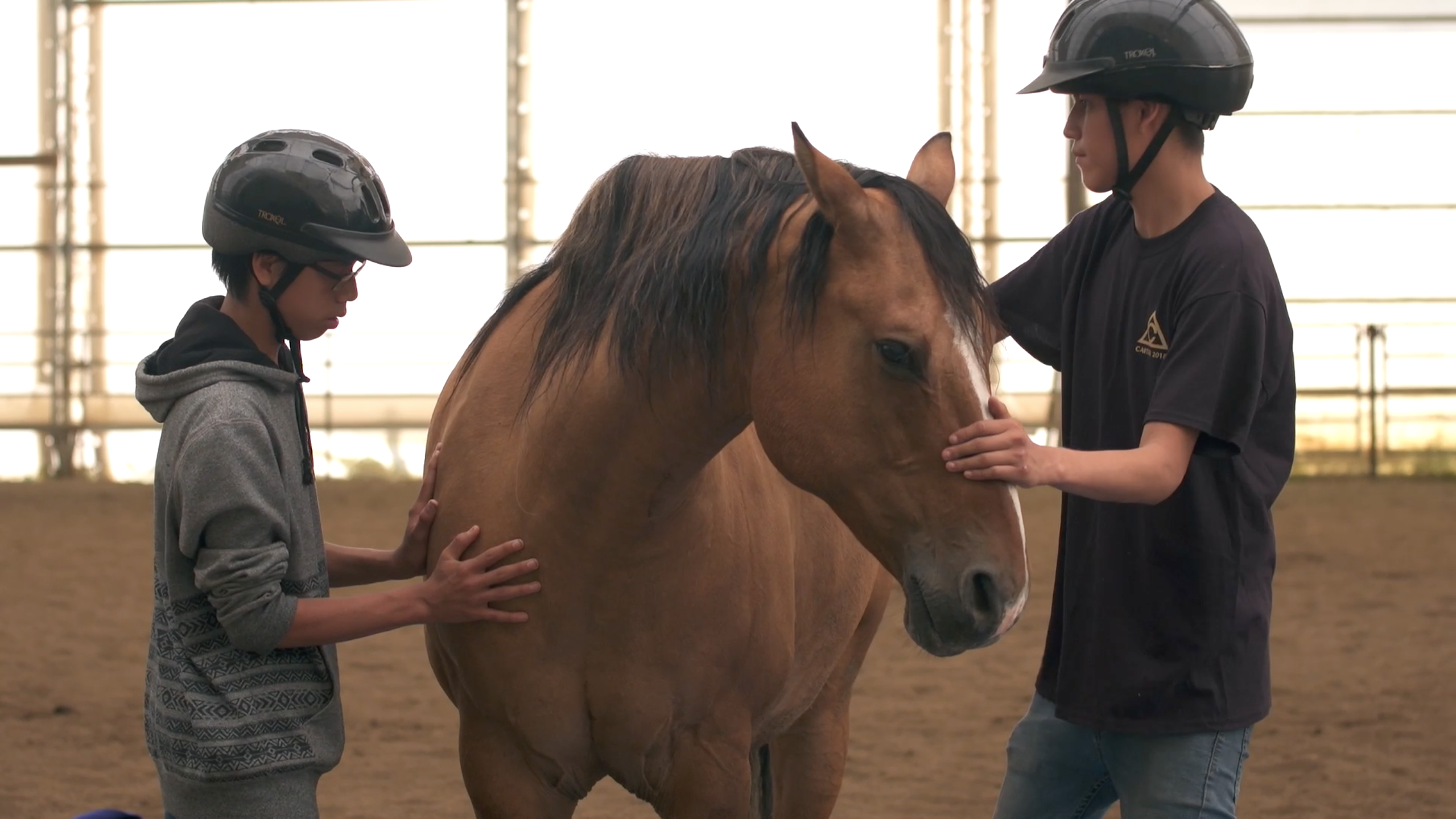 Video thumbnail for UNITED CHURCH – EQUINE PROGRAM